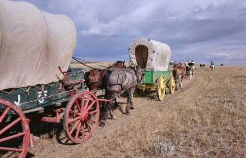Milk River Wagon Train.Library of Congress.1979