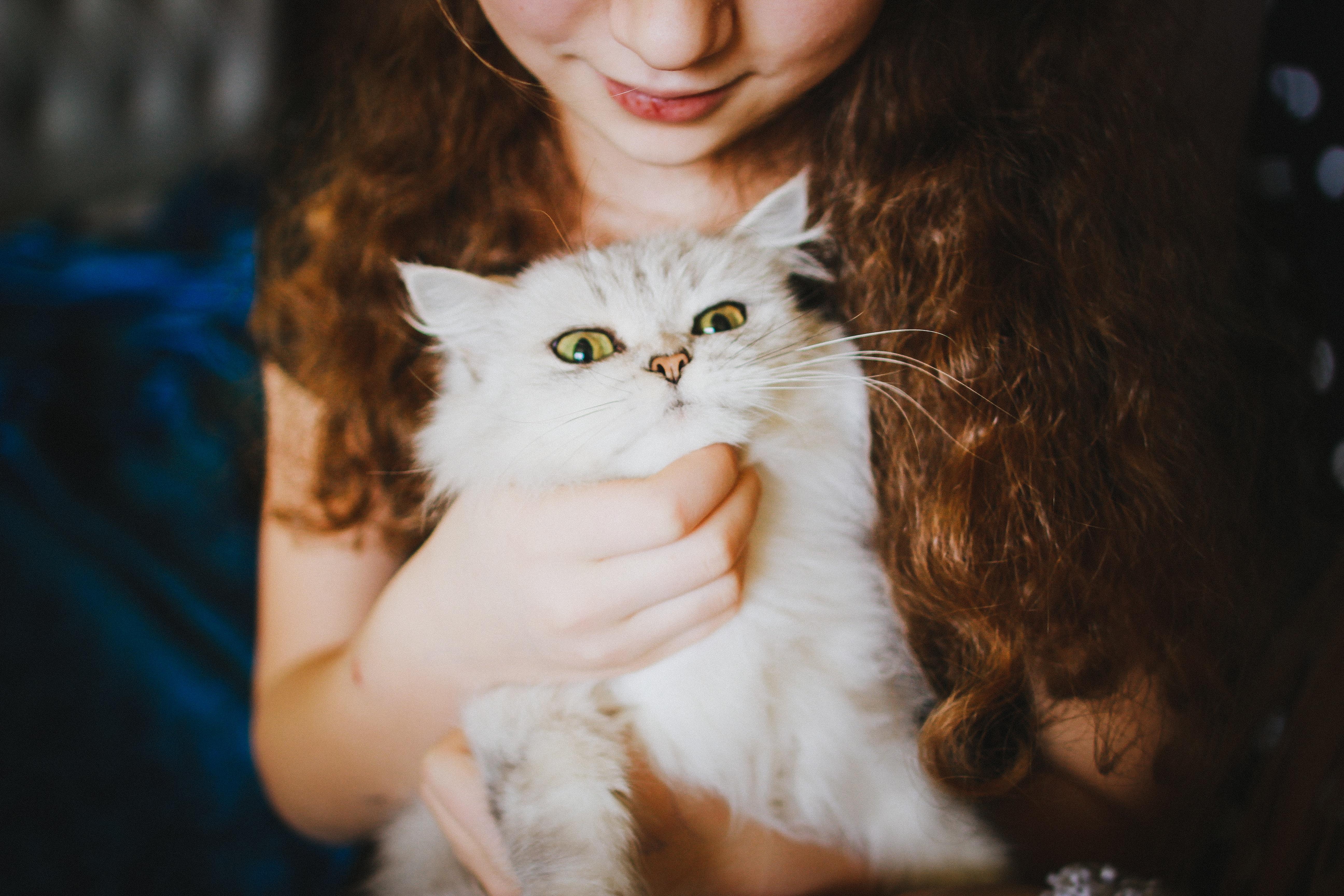 veronika-homchis-Child & Cat-unsplash